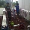 Thumb img00131 20120610 14261
