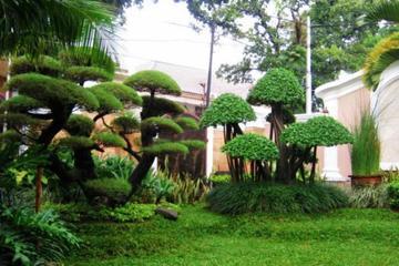 Medium desain taman penuh bunga depan rumah desain taman depan rumah 2
