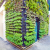 Thumb vertical gardens 02