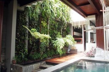Medium contoh taman vertikal didalam ruangan
