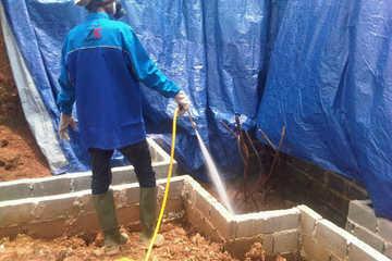 Medium zeta tree jasa anti rayap jasa pest control jasa cleaning service jakarta indonesia
