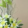 Thumb vase exotic