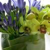 Thumb vase grandday
