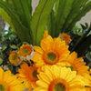 Thumb sunflower arrangement
